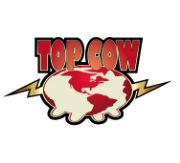 Top Cow Graphic Novels